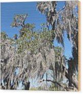 New Orleans - Swamp Boat Ride - 121239 Wood Print