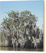 New Orleans - Swamp Boat Ride - 121244 Wood Print