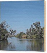 New Orleans - Swamp Boat Ride - 121245 Wood Print