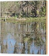 New Orleans - Swamp Boat Ride - 121249 Wood Print