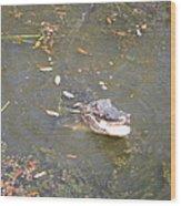 New Orleans - Swamp Boat Ride - 121255 Wood Print
