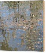 New Orleans - Swamp Boat Ride - 121262 Wood Print