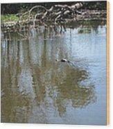 New Orleans - Swamp Boat Ride - 121264 Wood Print