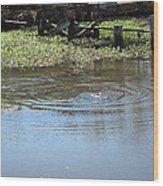 New Orleans - Swamp Boat Ride - 121275 Wood Print