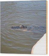 New Orleans - Swamp Boat Ride - 121277 Wood Print