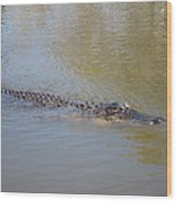 New Orleans - Swamp Boat Ride - 121281 Wood Print