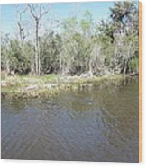 New Orleans - Swamp Boat Ride - 121291 Wood Print
