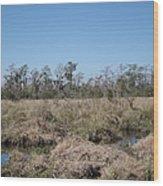 New Orleans - Swamp Boat Ride - 121292 Wood Print