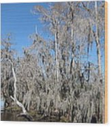 New Orleans - Swamp Boat Ride - 121293 Wood Print