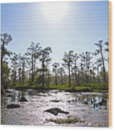 New Orleans Swamp Untouched Wood Print