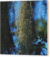New Orleans Tm 0016 Wood Print by Lance Vaughn