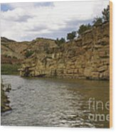 New Photographic Art Print For Sale Banks Of The Rio Grande New Mexico Wood Print