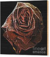 Perfect Gothic Red Rose Wood Print