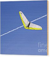 New Photographic Art Print For Sale Hanggliding 7 Wood Print