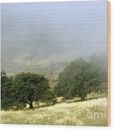 Mist In The Californian Valley Wood Print