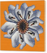 New Photographic Art Print For Sale Pop Art Swan Flower On Orange Wood Print