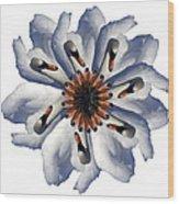 New Photographic Art Print For Sale Pop Art Swan Flower On White Wood Print