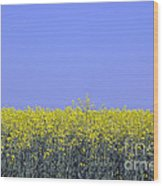 New Photographic Art Print For Sale Yellow English Fields 2 Wood Print