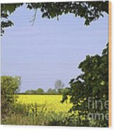 New Photographic Art Print For Sale Yellow English Fields 3 Wood Print