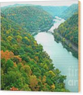 New River Gorge Viewed From Hawks Nest State Park Wood Print