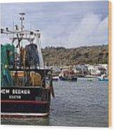 New Seeker - Lyme Regis Wood Print