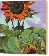 New Sunflowers Wood Print by Annette Allman