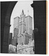 New York Arches 1990s Wood Print by John Rizzuto