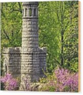 New York At Gettysburg - Monument To 12th / 44th Ny Infantry Regiments-2a Little Round Top Spring Wood Print