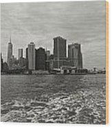 New York Battery Park View Wood Print