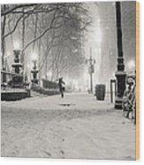 New York City Winter Night Wood Print