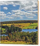 New York Countryside Wood Print by Christina Rollo