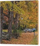 New York Fall Wood Print