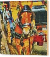 New York Horse And Carriage Wood Print