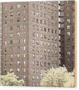 New York Public Housing Wood Print