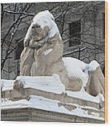 New York Public Library Lion Wood Print