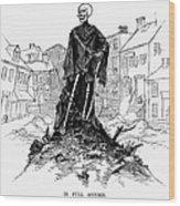 New York: Sanitation, 1885 Wood Print