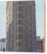 New York - The Flat Iron Building Wood Print