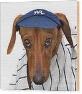New York Yankee Hotdog Wood Print