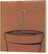 New Yorker April 4th, 1977 Wood Print