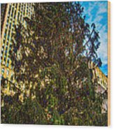 New York's Holiday Tree Wood Print