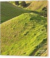New Zealand Farmland Wood Print