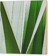 New Zealand Flax Simplified Wood Print