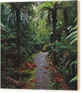 New Zealand Rainforest Wood Print