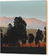 New Zealand Silhouette Wood Print