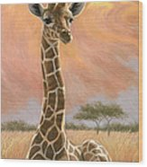 Newborn Giraffe Wood Print