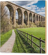 Newbridge Rail Viaduct Wood Print