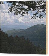 Newfound View Wood Print