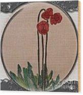 Newfoundland Pitcher Plant - Porthole Vignette Wood Print