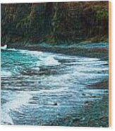 Rocky Beach Wood Print