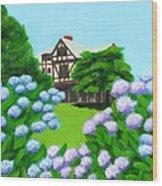 Newport Art Museum Wood Print